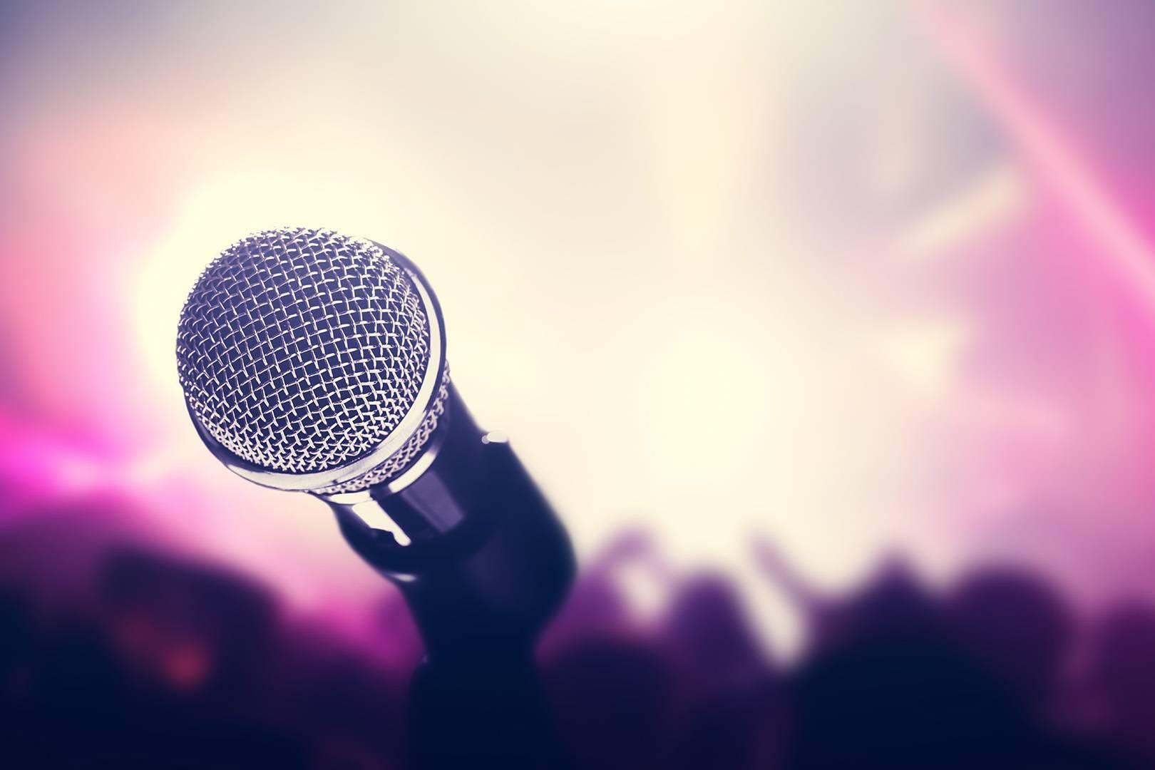 Dettaglio microfono